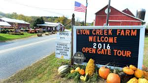 lyon creek farm